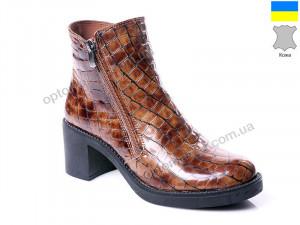 Купить Ботинки женские ACB 1809 ACB коричневый