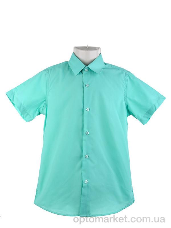 Купить Рубашка детские KAR106-7 green Verton зеленый, фото 2