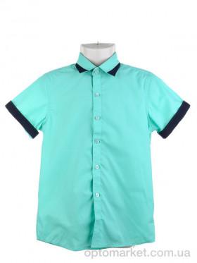 Купить Рубашка детские KAR265-7 green Verton зеленый
